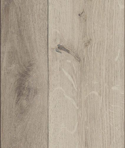 SP20 AS Oak Avis 500x500