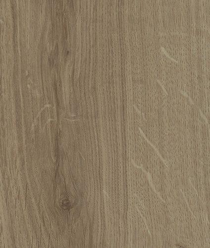 SP30 AS Oak Trea 500x500