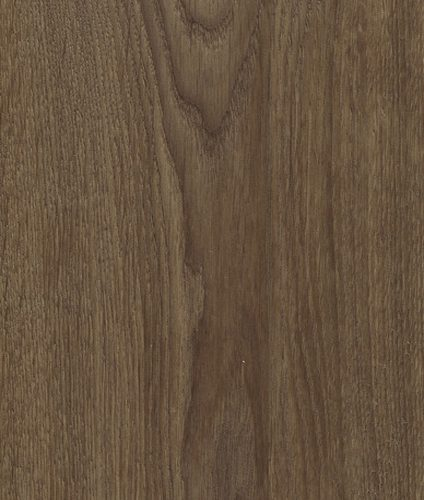 SP50 AS Oak Varin 500x500