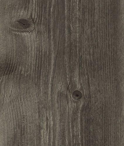 SP60 AS Oak Torra 500x500